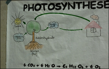 A poster made by students during the workshop illustrates the photosynthesis.