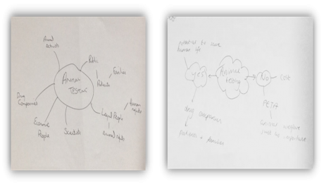 Figure 5. Some of the maps participants created to represent the controversy around testing drugs on animals