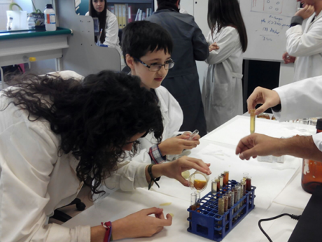Students engaged in scientific research in collaboration with scientists at the University of Jaén